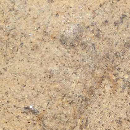chocolate brush limestone